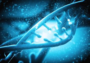 Explore the mysteries of DNA in biology at CUKC;
